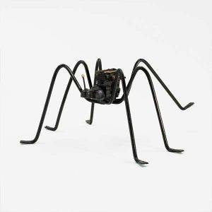 A35-1---Spider-Fernandez